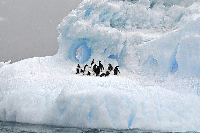 ice-3180910_640